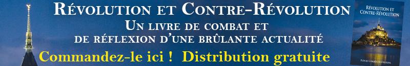 banner RCR - Notre-Dame : un Français sur trois doute de la thèse accidentelle