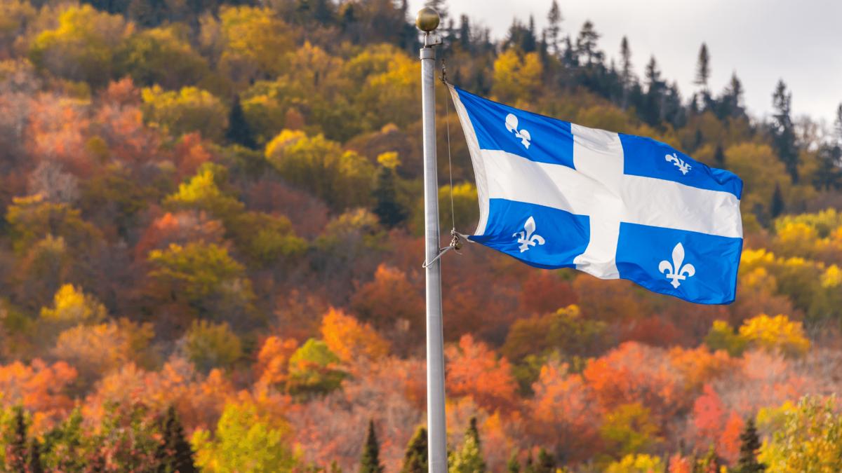 Mignonnes 1200x675 - Québec : le français langue maternelle en voie de disparition